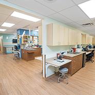 Veterinary Lab and Pharmacy