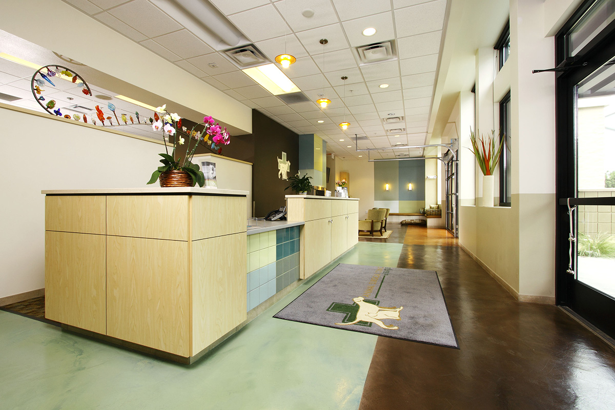 Bda Architecture Veterinary Hospitals