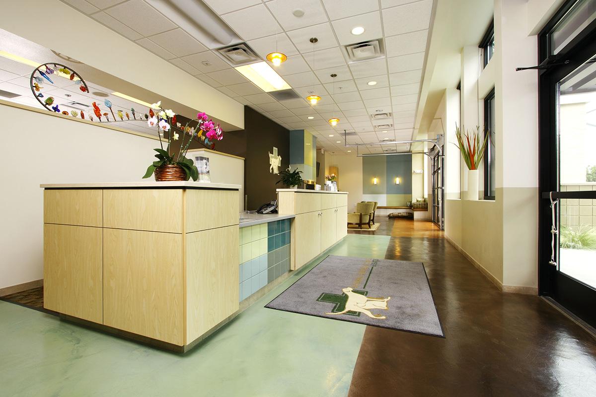 Vet clinic lobby