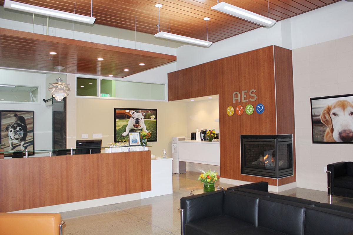 Vet clinic lobby veterinary hospital lobby animal hospital waiting room