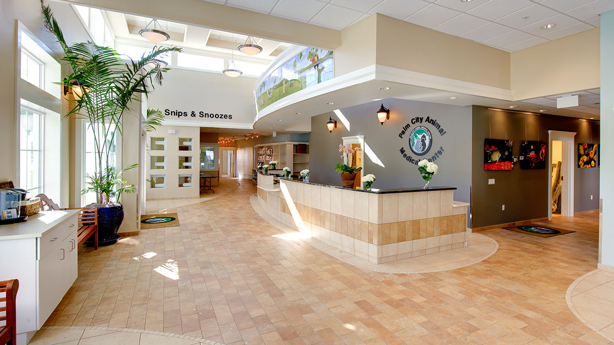 BDA Architecture :: Veterinary Hospitals