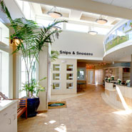 Veterinary Hospital Lobby