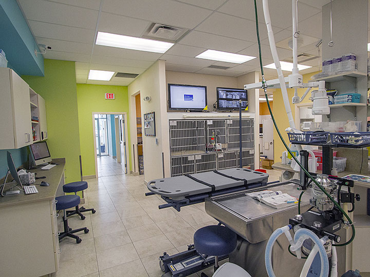 BDA Architecture :: Veterinary Hospitals :: Renovation