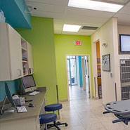 Veterinary Hospital Treatment Remodel