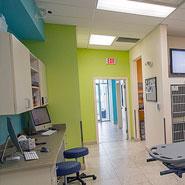Veterinary Hospital Treatment Remodel