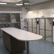 Animal Clinic ICU