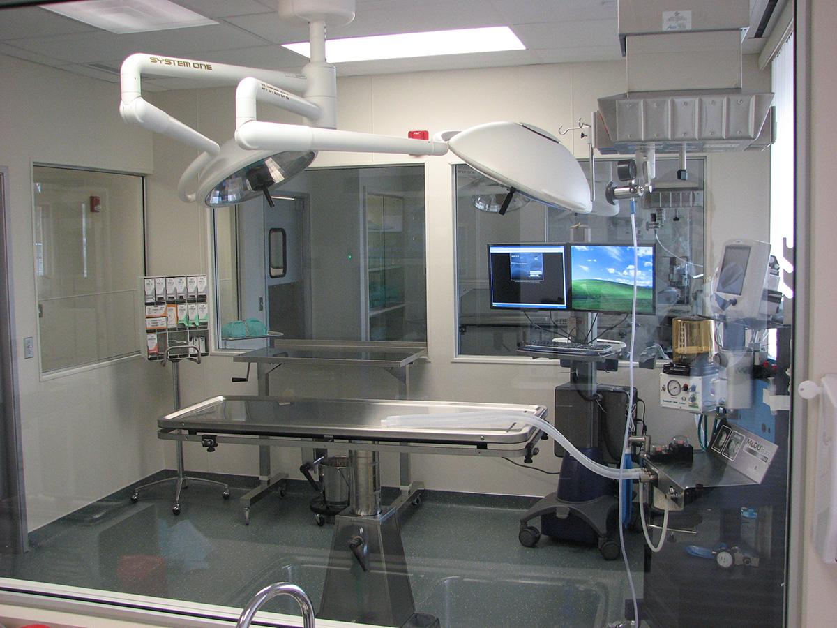 Veterinary Hospital Surgical Room Design
