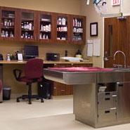 Animal Clinic Treatment Room