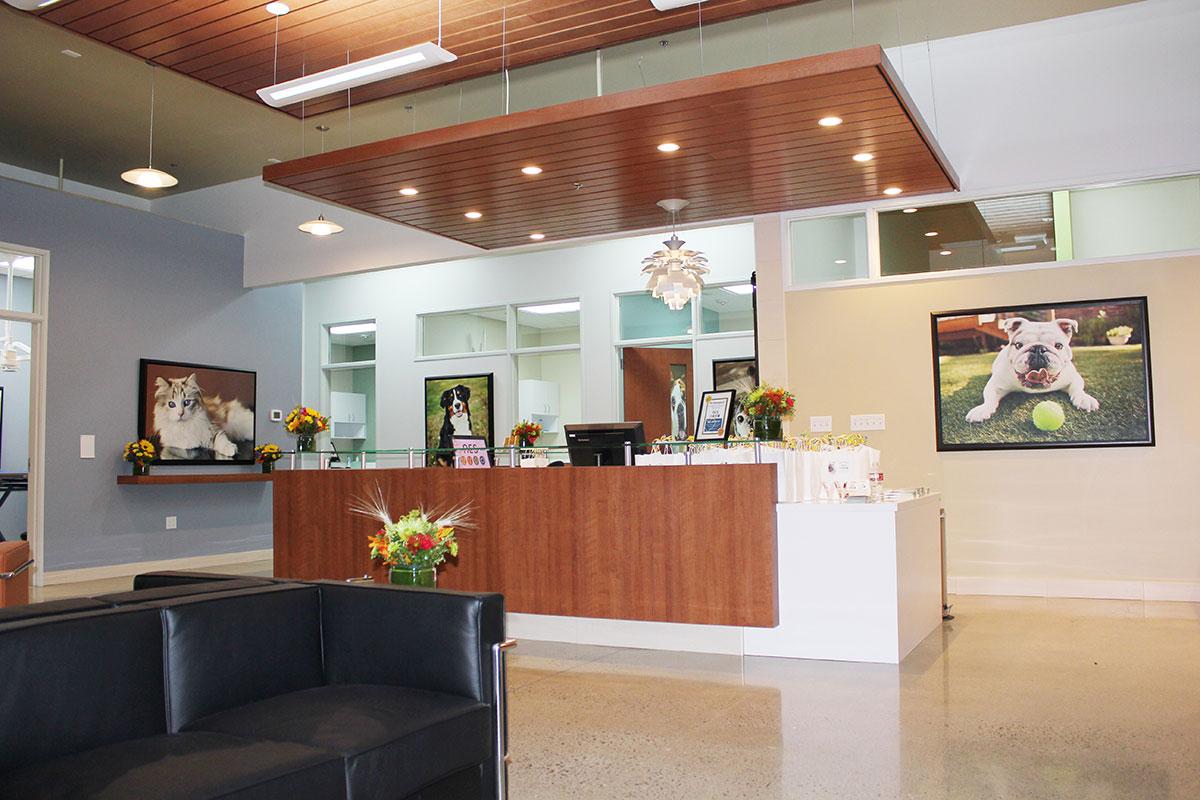 Bda Architecture Veterinary Hospitals Emergency