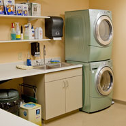 Veterinary Hospital Utility Room