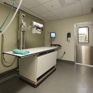 Veterinary Imaging Equipment