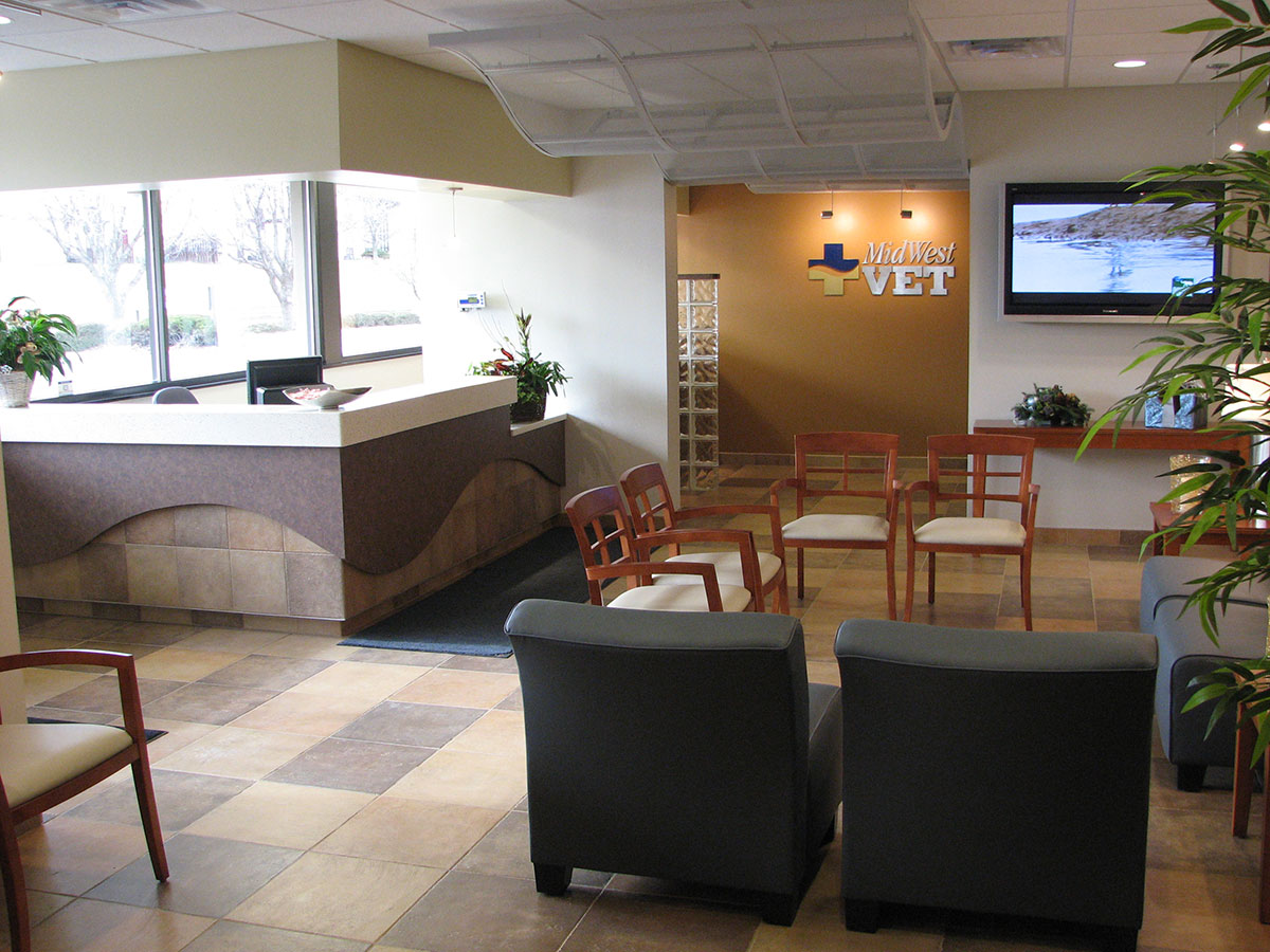 Veterinary Clinic Waiting Room Design