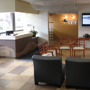 University Veterinary Hospital Waiting Room