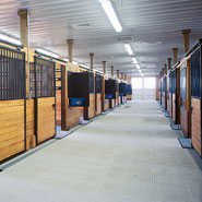 University Equine Stalls