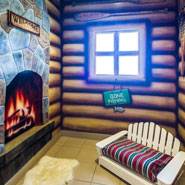 Luxury Dog Boarding — Log Cabin
