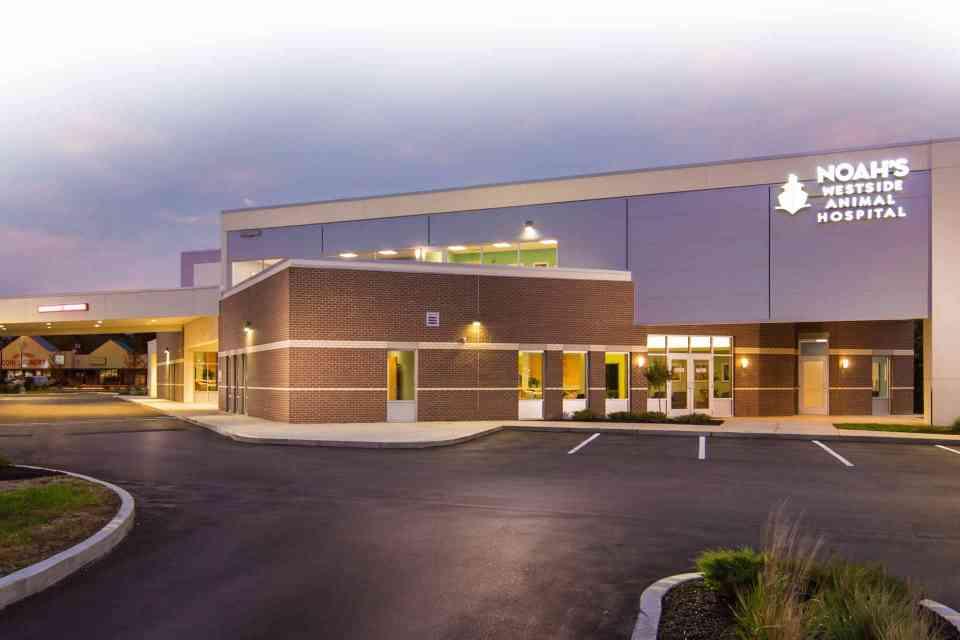 Photo of Noah's Westside Animal Hospital